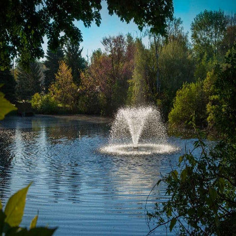 Picture of the Scott Aerator DA-20 Display Fountain Aerator 1/2HP put in a Pond with Trees Everywhere