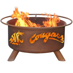 Washington State F216 Steel Fire Pit by Patina Products with white background.
