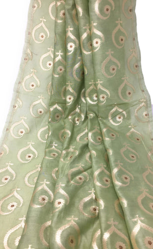 Pista Green Pure Chanderi Fabric With Gold Banarasi Work