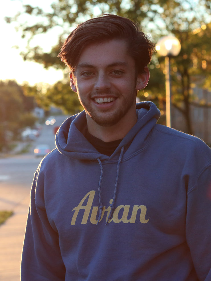 College Guy Wearing Classic Avian Hoodie - Steel Blue