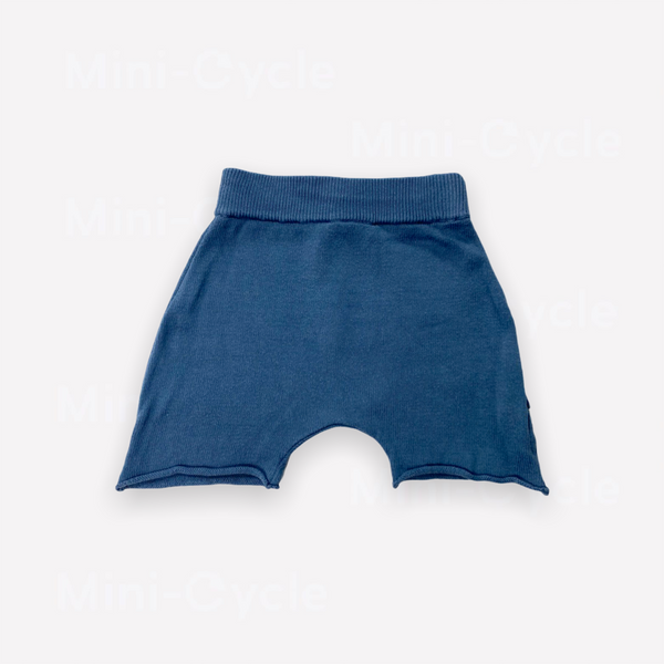 Re-Cycle Solid Blue Shorts