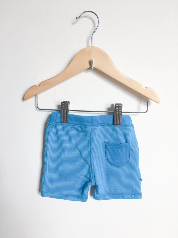 Paige Lauren Bottoms 3-6m / Gently Used Re-Cycle Blue Striped Shorts