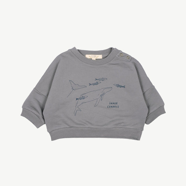 Red Caribou Sweatshirt Inner Compass Baby Sweatshirt - Charcoal Grey