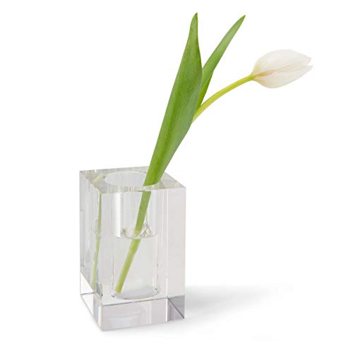 Clear Square/Rectangle Lexi Bud Vase