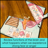 Parts of the Brain Classroom Guidance Lesson & Brain Centers