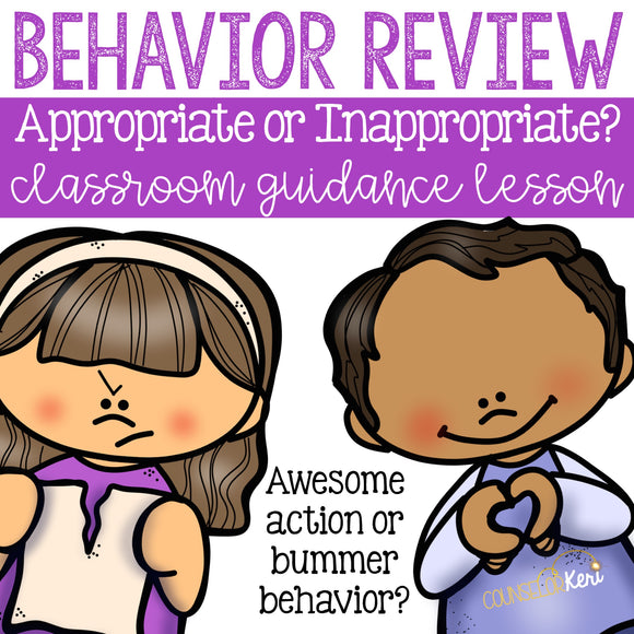Appropriate Behavior: Making Good Choices Classroom Guidance Lesson