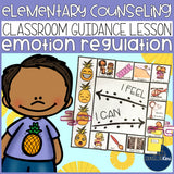 Emotion Regulation Classroom Guidance Lesson for Elementary School Counseling