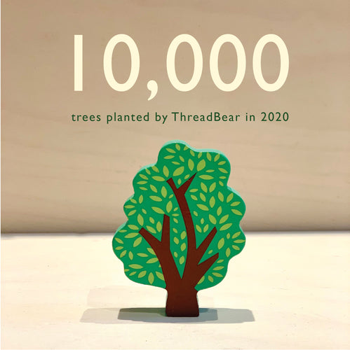 We have planted 10,000 trees since January!