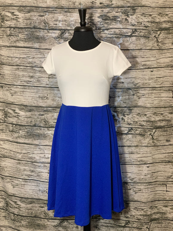 Women's Short Sleeve Scoop Neck Dress White and Royal Blue  Color Block