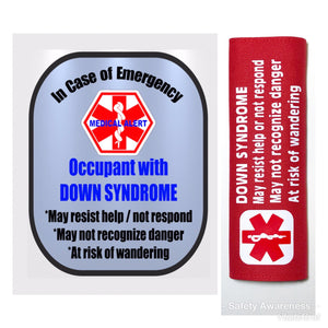 Down Syndrome Backpack Strap - Car Seat Strap Cover - Window Decal Set