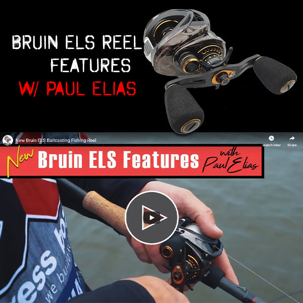 NEW Bruin ELS Features with Paul Elias