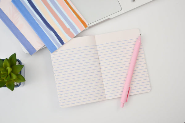 The inside of a mini notebook with periwinkle lines and a pink jotter pen