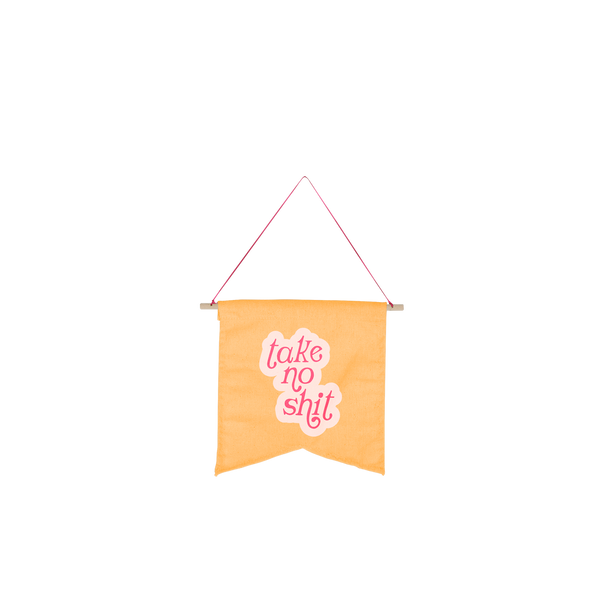cute hanging wall style pennant on orange background with saying take no shit