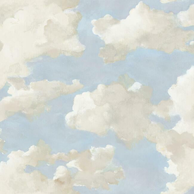 York Wallpaper PSW1079RL Clouds on Canvas