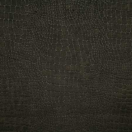 Pindler Fabric WIL055-BR16 Wilder Cocoa
