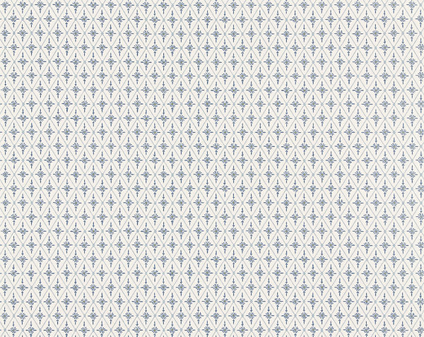 Scalamandre Wallpaper WSB0702-056 Einar Blue