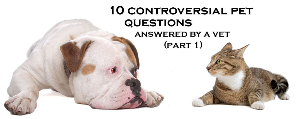 10 Most controversial pet questions,answered by a vet (Part 1)
