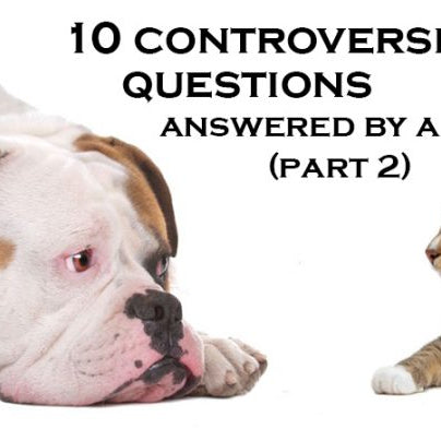 10 Most controversial pet questions,answered by a vet (Part 2)