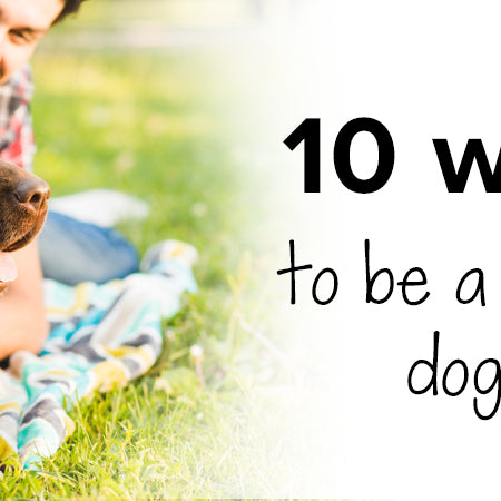 10 ways to be a better dog owner