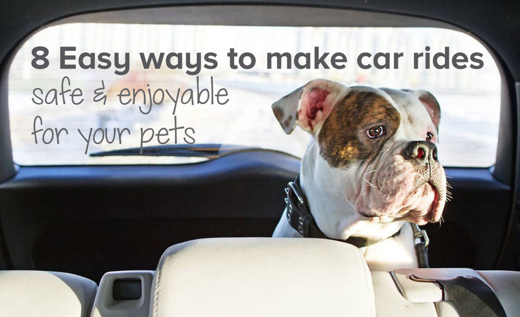 8 Easy ways to make car rides safe and enjoyable for your pets
