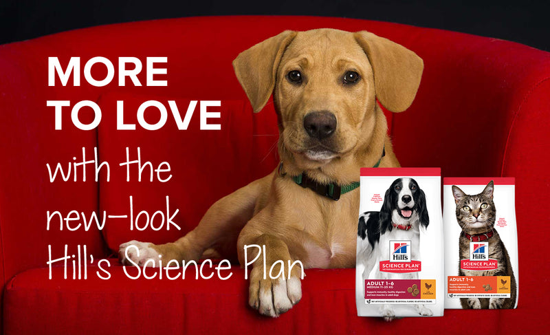 New-look Hill's Science Plan | Buy pet food online in South Africa