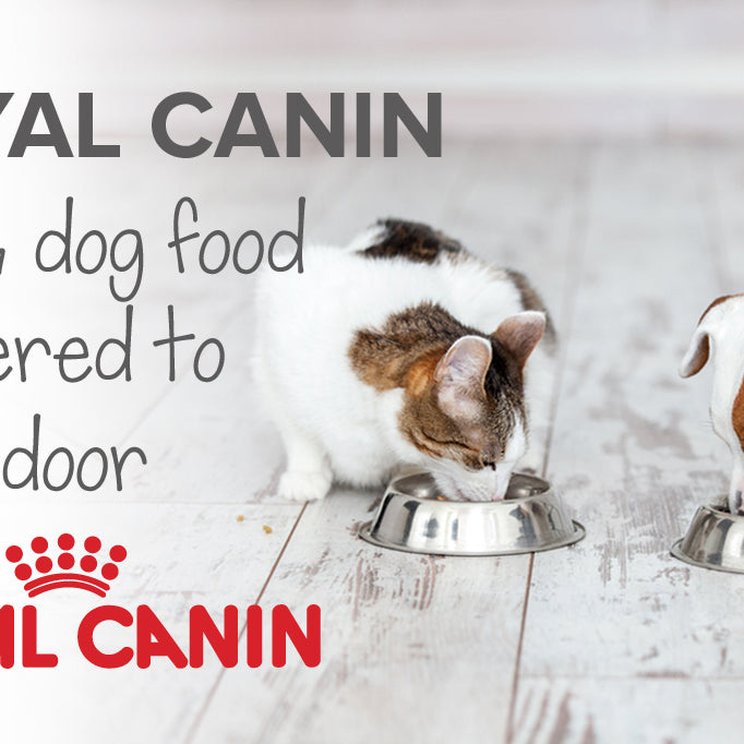 Royal Canin cat & dog food delivered in SA | Pet food delivery