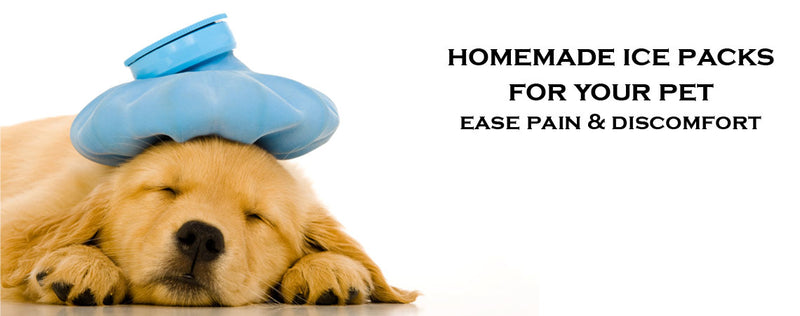 How to make homemade ice pack for your pet to ease pain & discomfort
