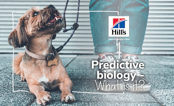 What Is Predictive Biology And How Does It Influence Your Pets Meals?