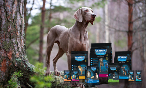 olympic_professional_dog_food_range