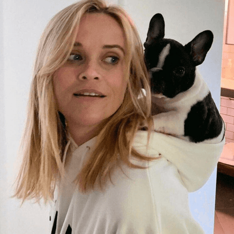 Reese witherspoon and dog