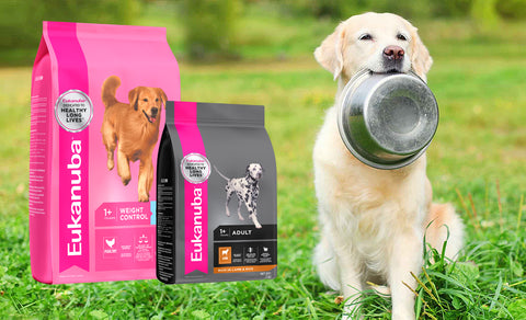 Eukanuba_dog_food_products