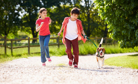 kids_walking_dog