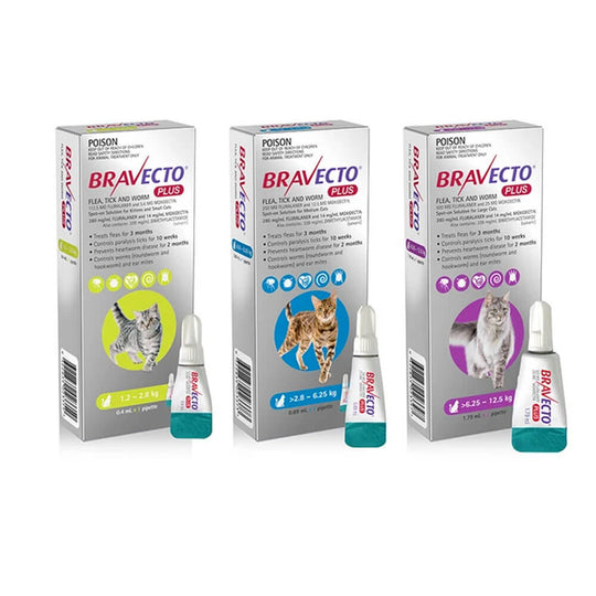 Bravecto PLUS Tick, Flea and Worm Control for Cats