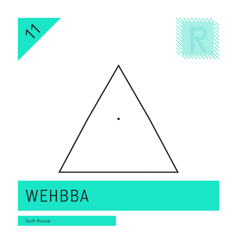 Tech-House feat. Wehbba (24bit WAV Loops & Oneshots)