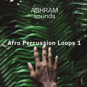ASHRAM Afro Percussion Loops 1 (Loops Sample Pack)