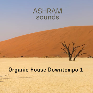 ASHRAM Organic House Downtempo 1 (Loops & Oneshots Sample Pack)