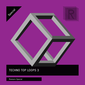 Riemann Techno Top Loops 3 (24bit WAV Loops)