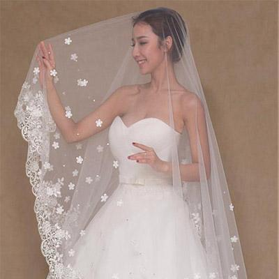 Gorgeous Tulle Long Wedding Veil With Lace & Beadings ,WV0123