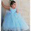 Blue Tulle A-Line Sleeveless Flower Girl Dresses, Popular Lace Little Girl Dresses, TYP1416