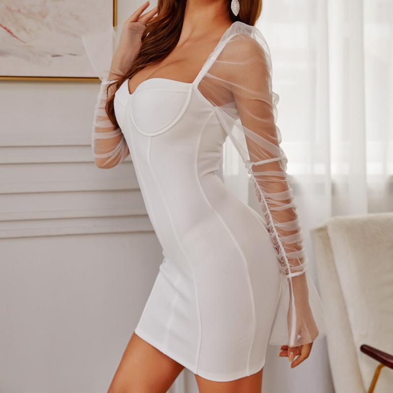 Mesh Long Sleeve Party Dress