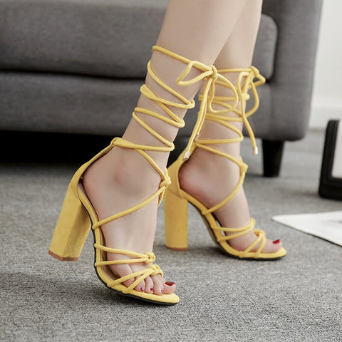 Suede Lace Up Cutout High Chunky Heel Sandals
