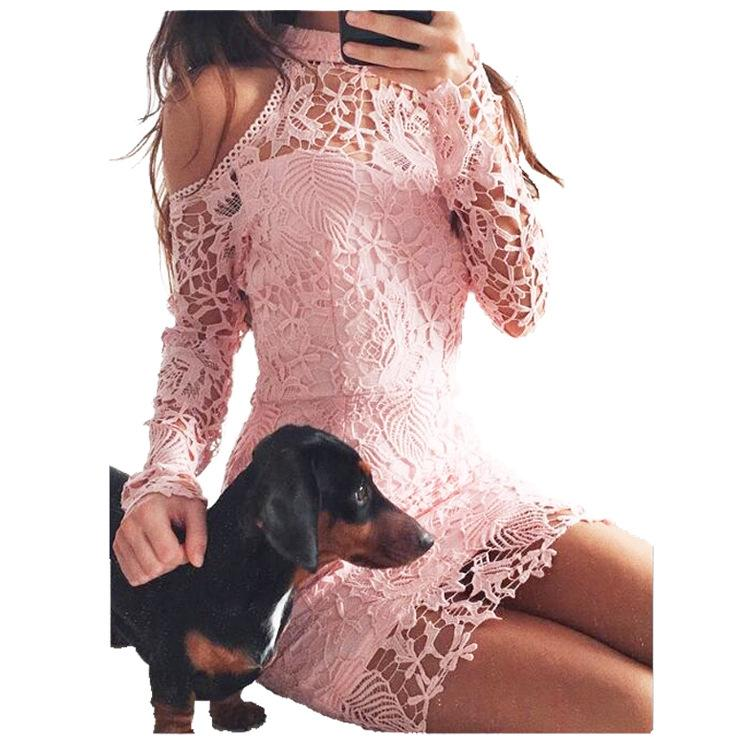 Bear Shoulder High Neck Long Sleeves Short Lace Dress