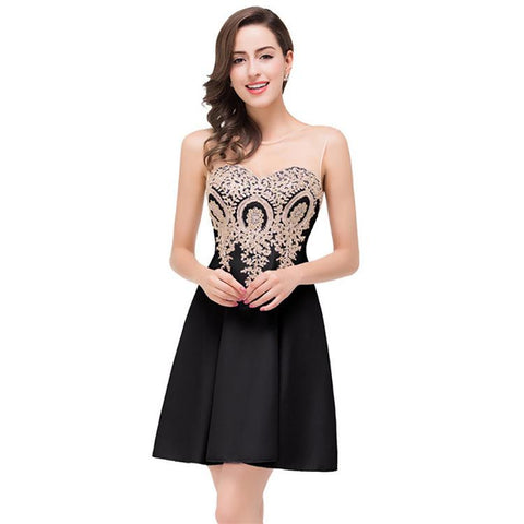 Transparent Mesh Patchwork Applique Pleat Short Party Dress