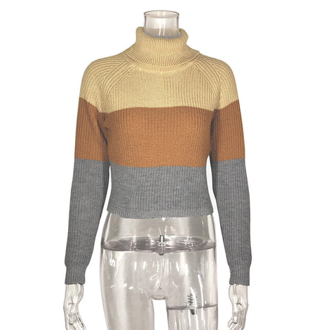 Turtleneck Colorblock Cropped Knit Sweater