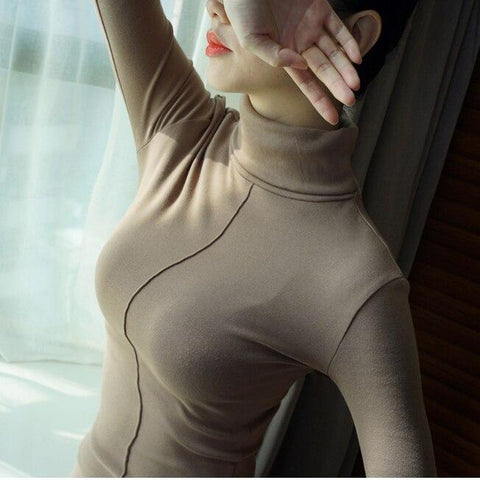 Sweater Female Soft Korean Style Skinny Winter Turtleneck Women Bodycon Basic Pullovers Long Sleeve Pull Femme Coat Female Top