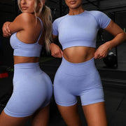 Sports Plain Short Sleeve Bodycon High Waist Two Pieces Set