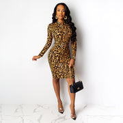 Leopard O Neck Bodycon Long Sleeve Dress
