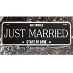 JUST MARRIED Car Sign