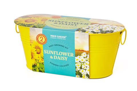 Mini Windowsill Oval Duo Summer Colours - Sunflower & Daisy - Zigzagme