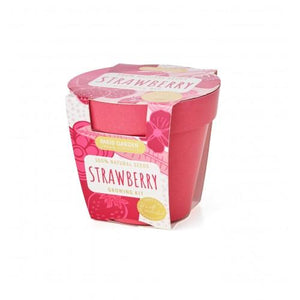 Biodegradable Pot - Strawberry - Zigzagme